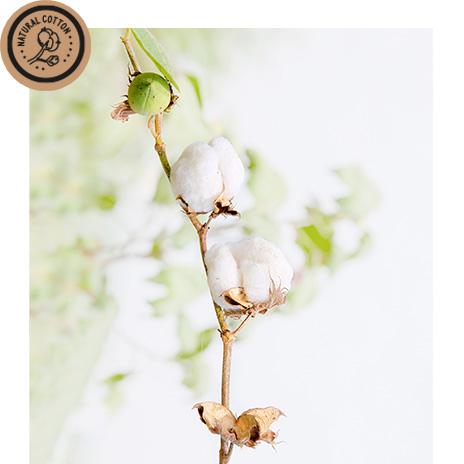 DIY-Natural-Cotton.jpg